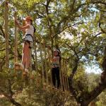 campamento verano - circuito árboles